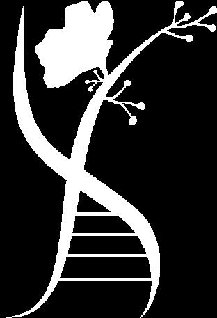 logomarca-02